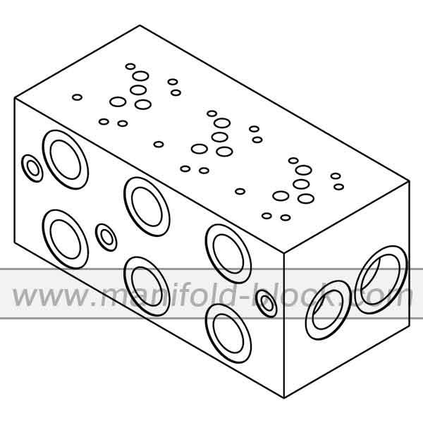 D05 Hydraulic Manifold BM10PX